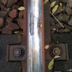 pate-vegetale-rail